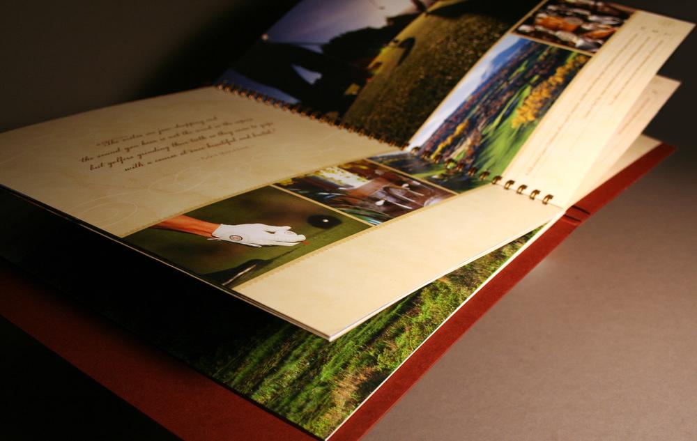 REDSKYbook.jpg