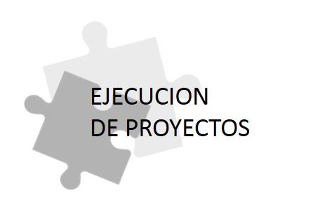EJECUCION+DE+PROYECTOS (2).jpg