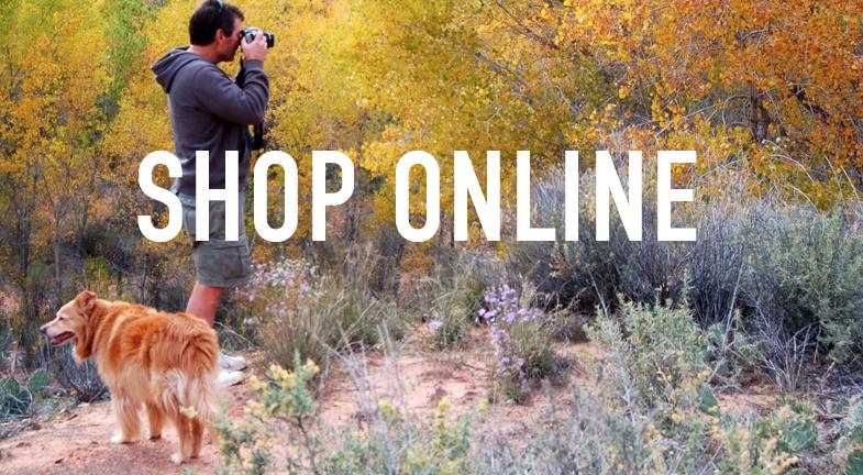 shop_online.png