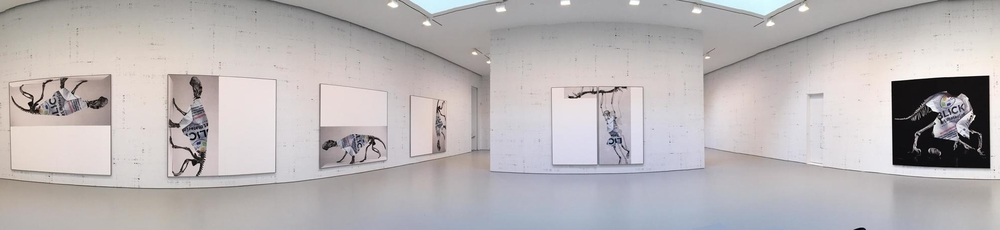 Exhibition Images,  Michael Reidel , David Zwirner Gallery  , New York   Photo Credits: Cincala Art Advisory