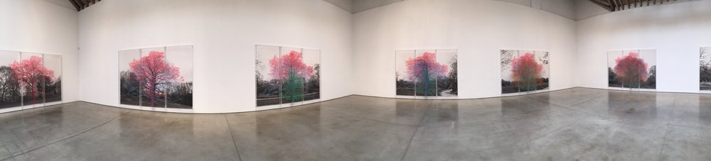 Exhibition Image,  Numbers and Trees: Central Park Series I , Charles Gains, The Paula Cooper Gallery, New York Photo Credits: Cincala Art Advisory