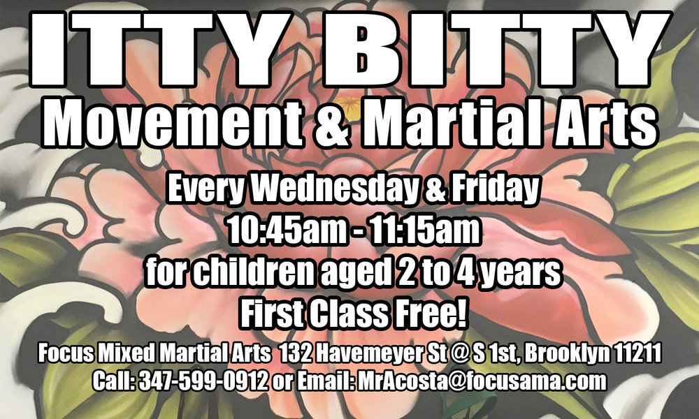 NEW Itty Bitty Movement & Martial Arts! - Join us on Wednesdays & Fridays for our new class for 2 to 4 year olds! We focus on developing gross motor skills, building body confidence, paying attention, and following directions. First 20 sign-ups get unlimited classes only $50/month!