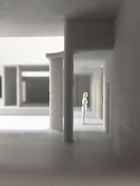 Cole Model Hallway-1.jpg