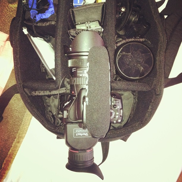 Cancun Day 9: Pack geared up for another beach party shoot.