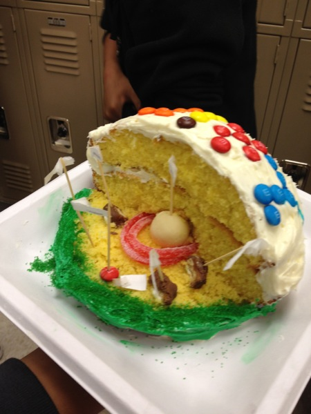 Delicious Cell Project Created By A 7th Grade Science Student