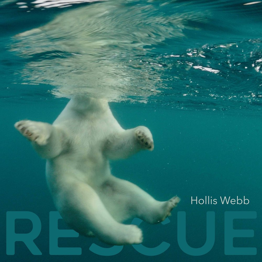Album Artwork for RESCUE, 2017.