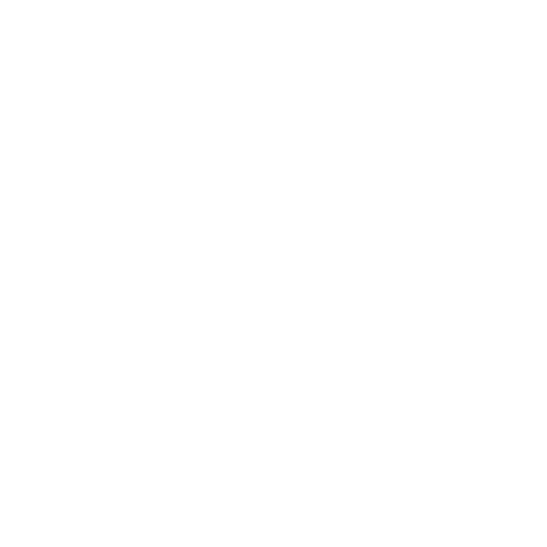 Native Creative – Branding & Design for the Ambitious