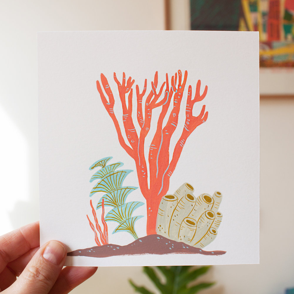 coral-wall.jpg