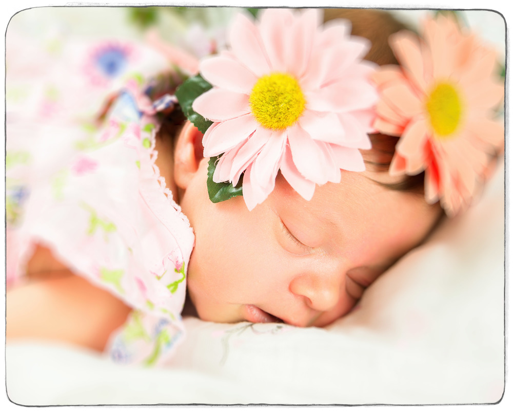 Wairarapa Maternity and Newborn Baby Photographer