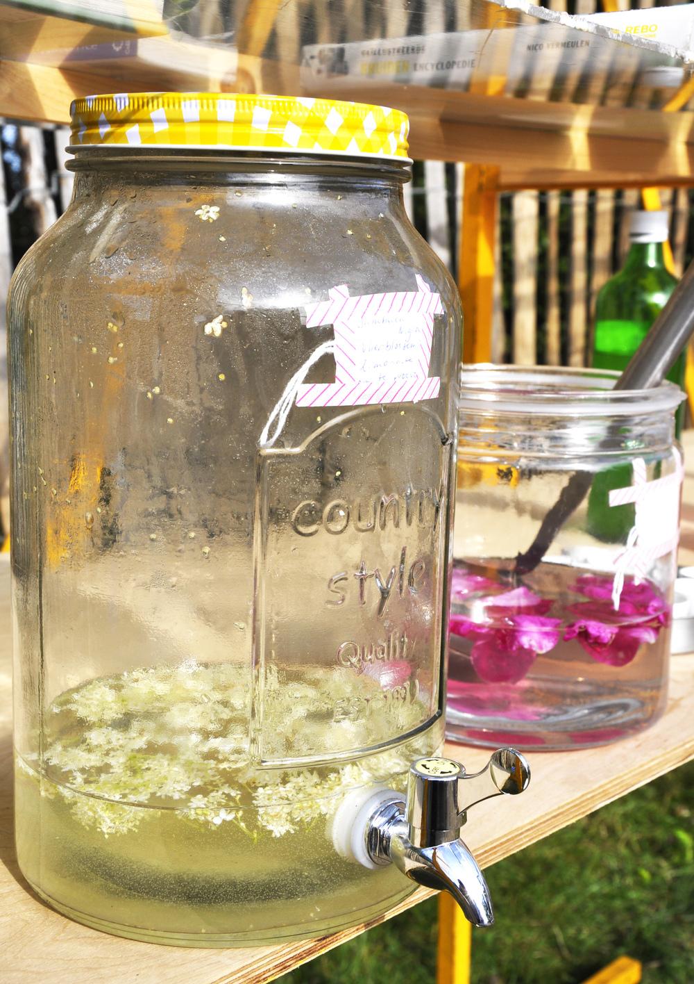 Op Terschelling was het duidelijk kouder geweest, de Vlier op het vasteland was al uitgebloeid, maar tijdens Oerol kon er nog limonade van gemaakt worden. Ook de Rimpelroos bloeide volop, een kans om nog enkeleflesjes heerlijke Rozenlimonade te maken en te laten proeven aan de bezoekers.