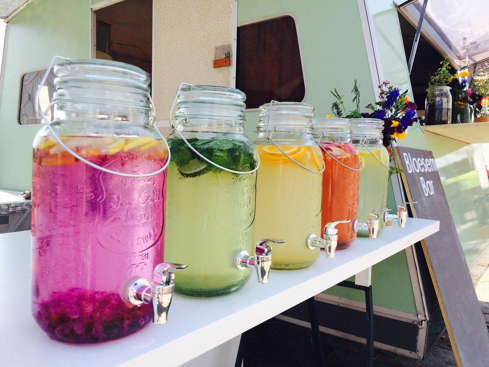 Limonades: Viool, wilde Munt, Kamperfoelie, Roos, Vlier
