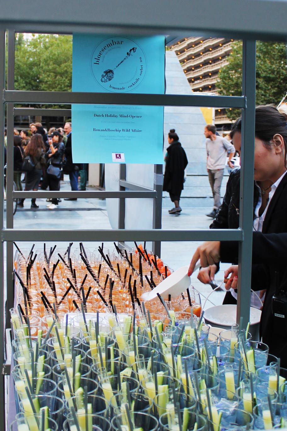 De Keuze-Overzicht en poster.jpg