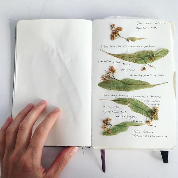 Journal London foragings