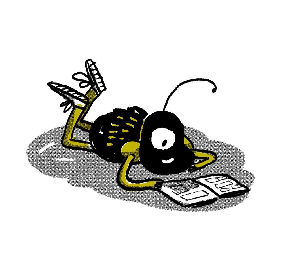 bug 18.jpg