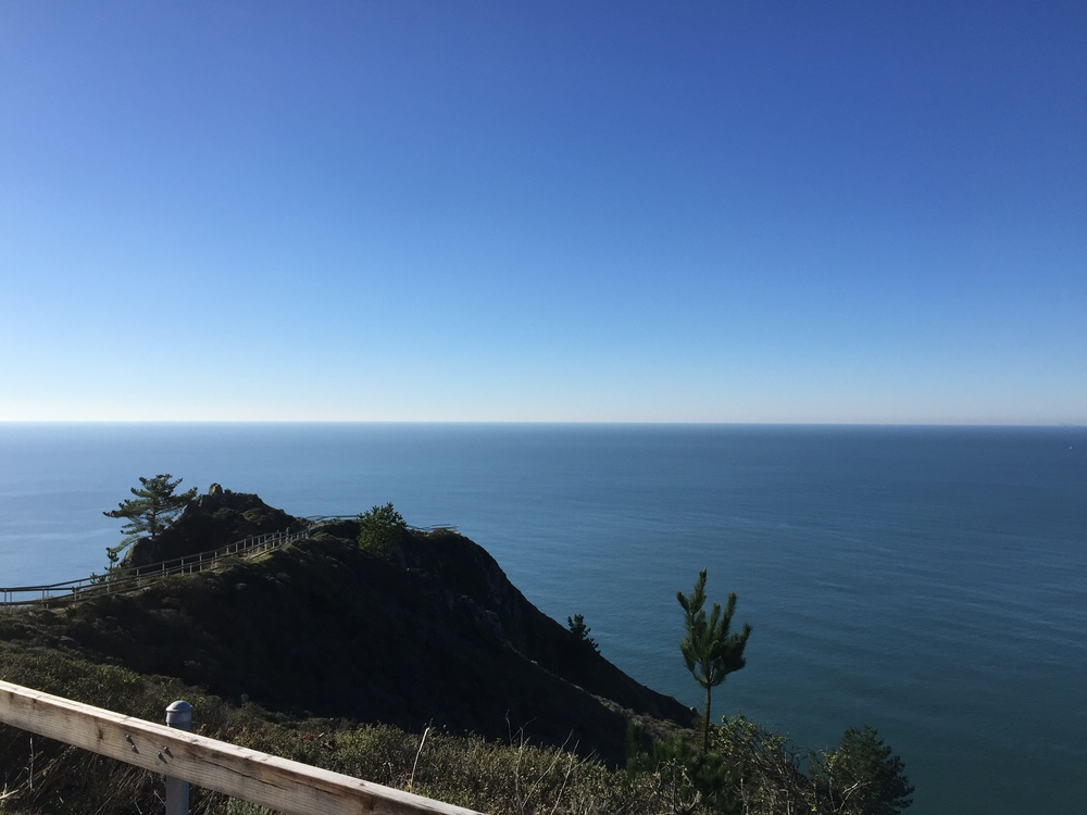 Many Views of The Pacific