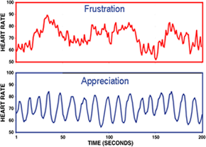 heart-rate-variability.png