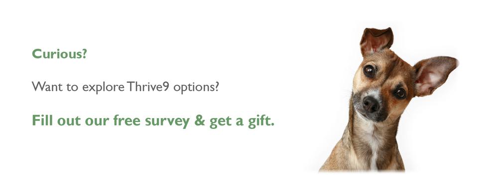 T9 Survey.jpg
