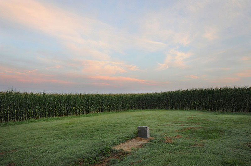 Corn field cemetery, 2013