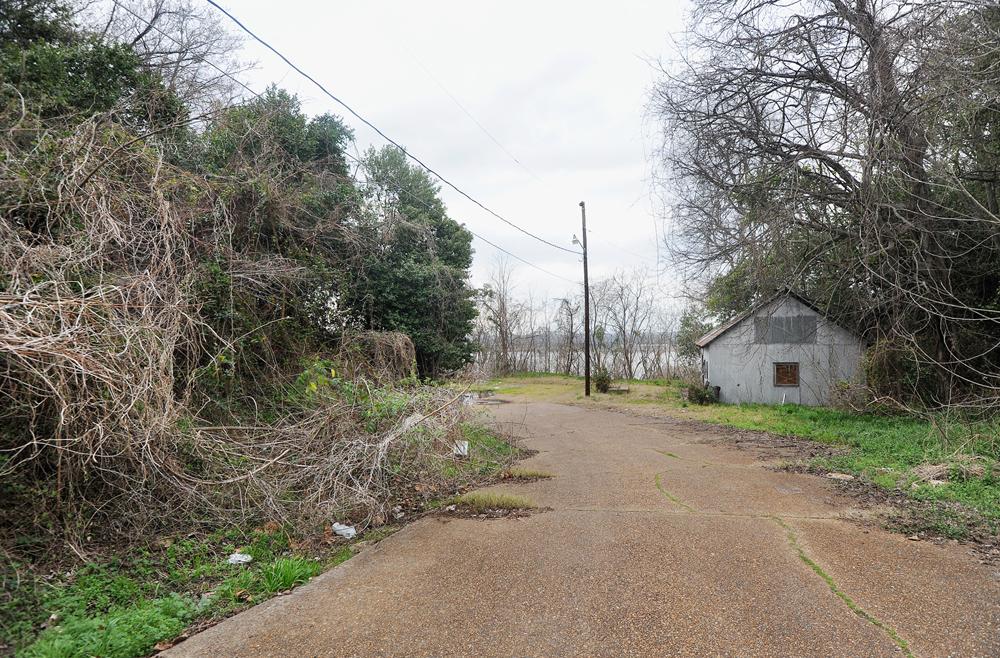 Greene Street, 2012