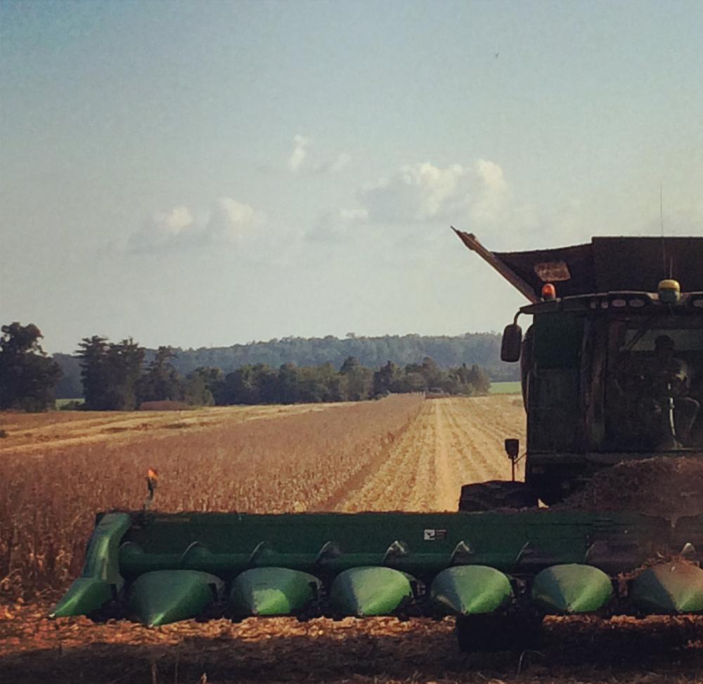 Harvester_WEB.jpg