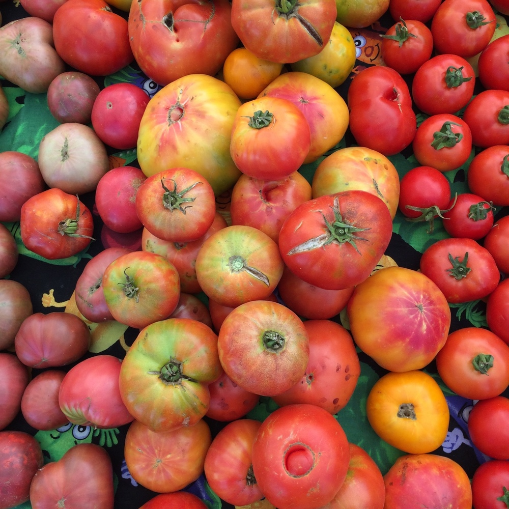 Heirloom Tomatoes from Oya Organics at the Mountain View Farmers' Market