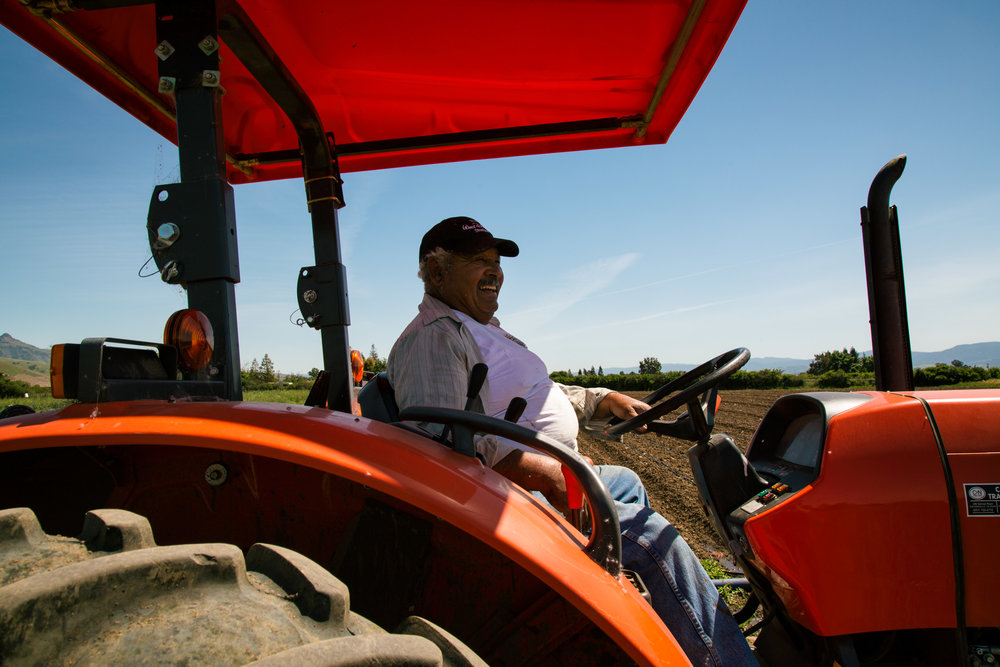 The farm's de facto elder and primary tractor operator Alfredo, smiles brightly as he prepares for hours of driving in the field.