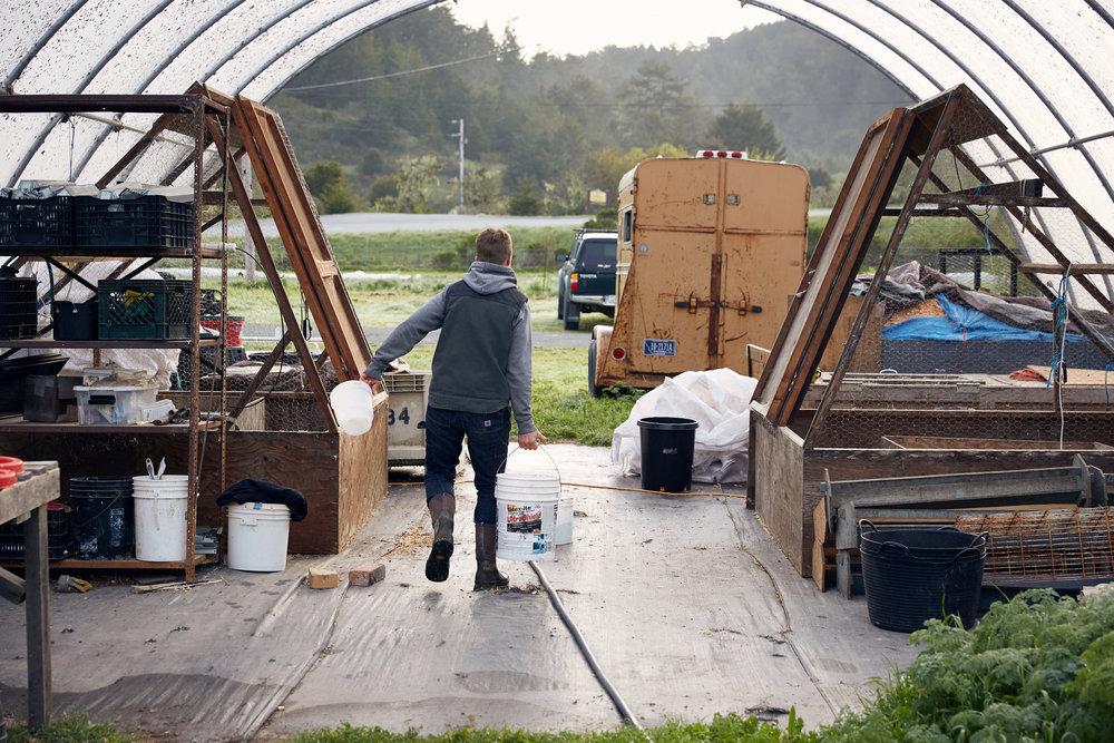 RDF_Appeal-18_4_Dede-Farm_1.jpg