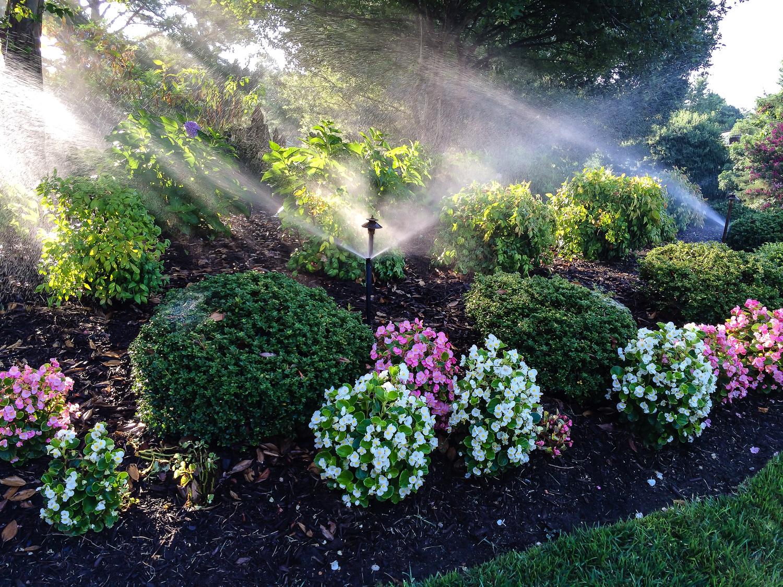 Residential Irrigation installation — Miller Irrigation ...