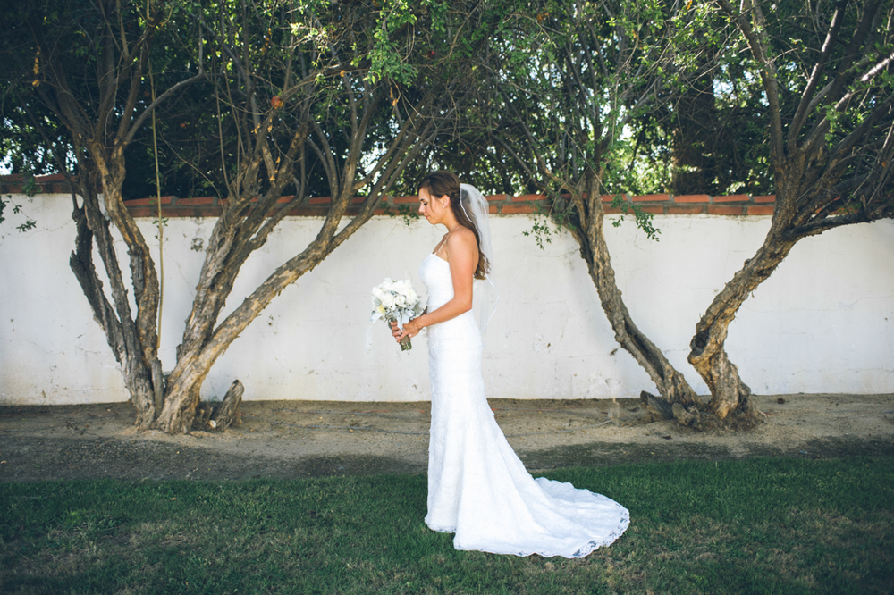 Klein Wedding17.jpg