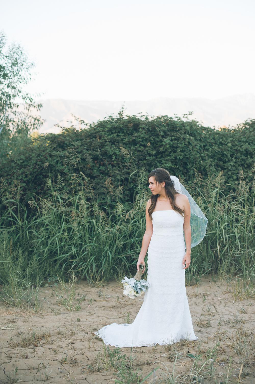 Klein Wedding54.jpg