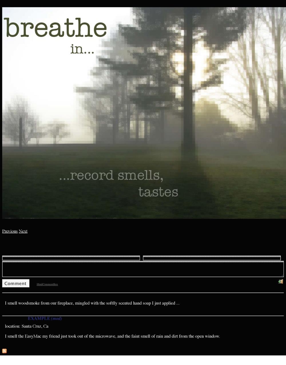 Digital Senses Project (Taste & Smell).jpg