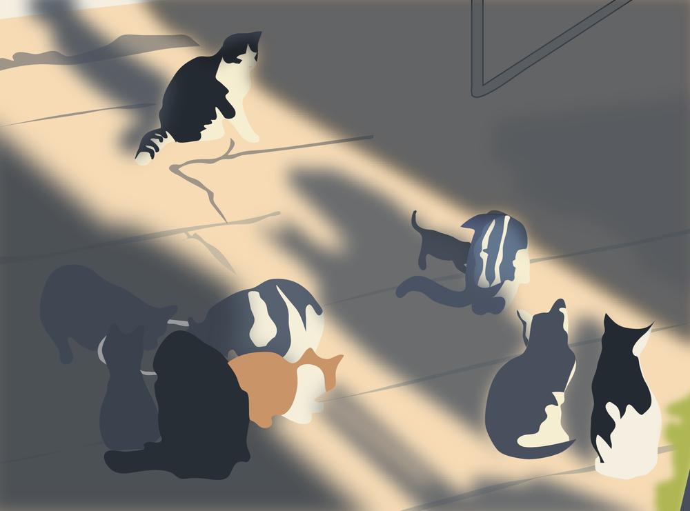 feedingcats2_copy--01.png