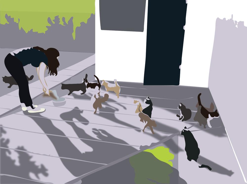 feedingcats1_copy-01.png