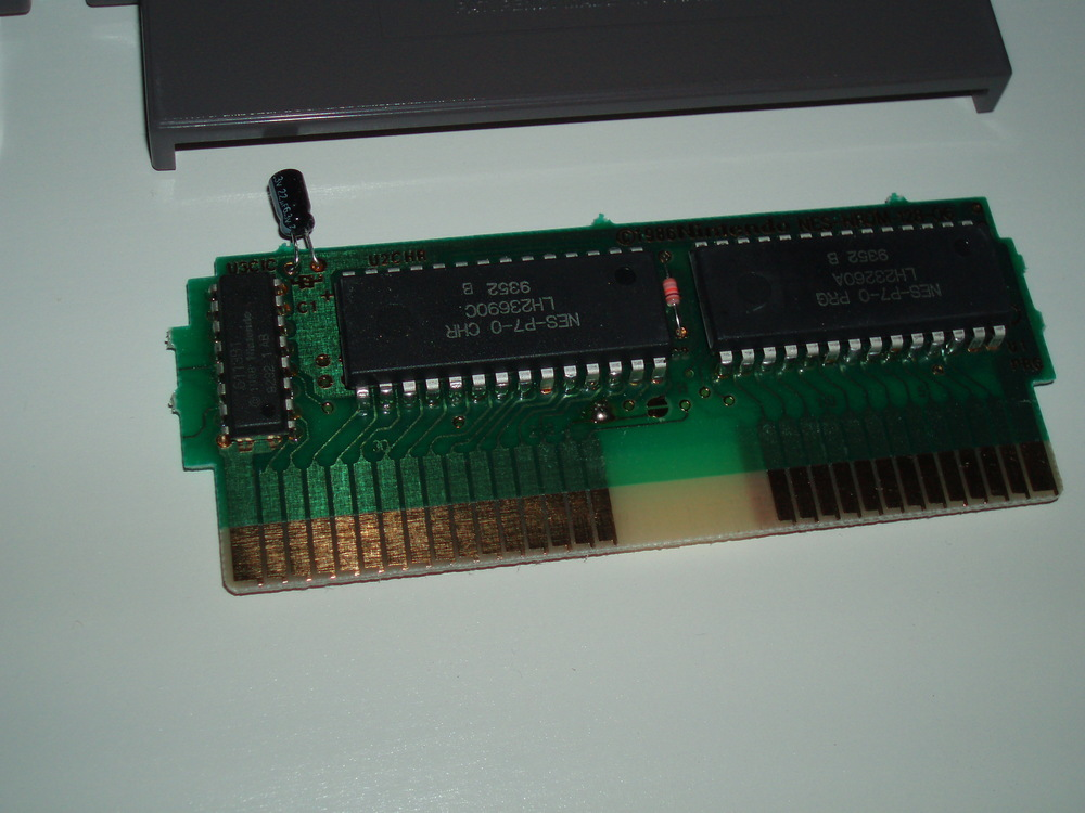 P1010080.JPG