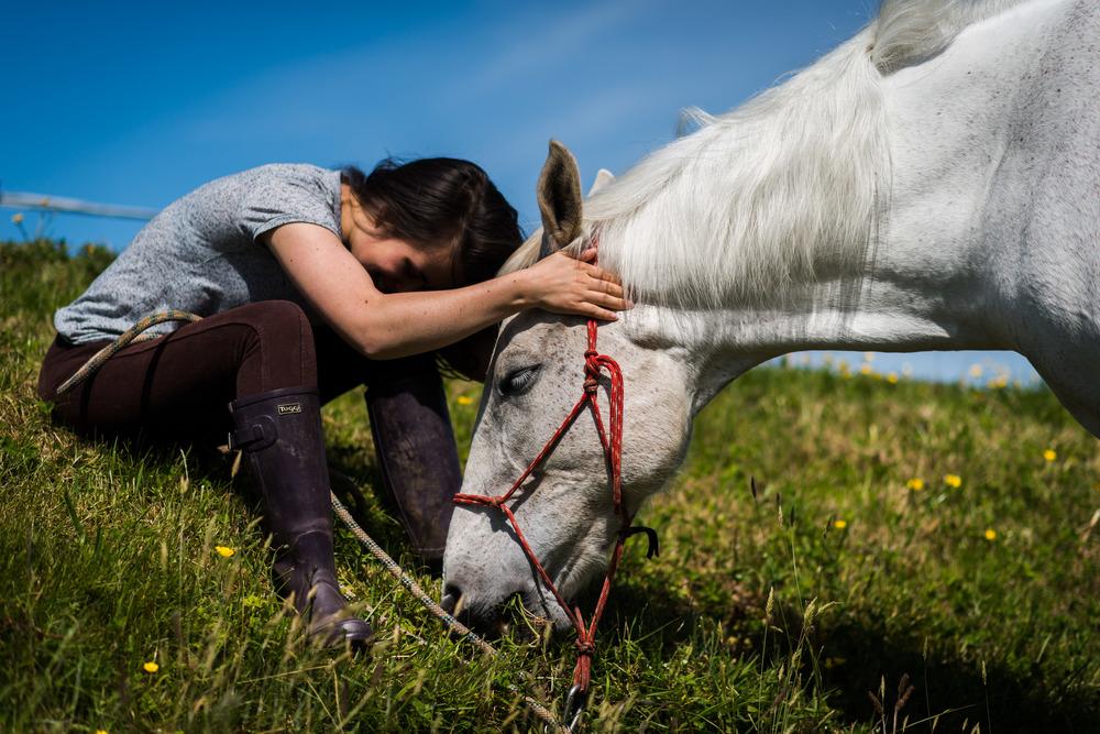PLP_Horses_JessD_15-14.jpg