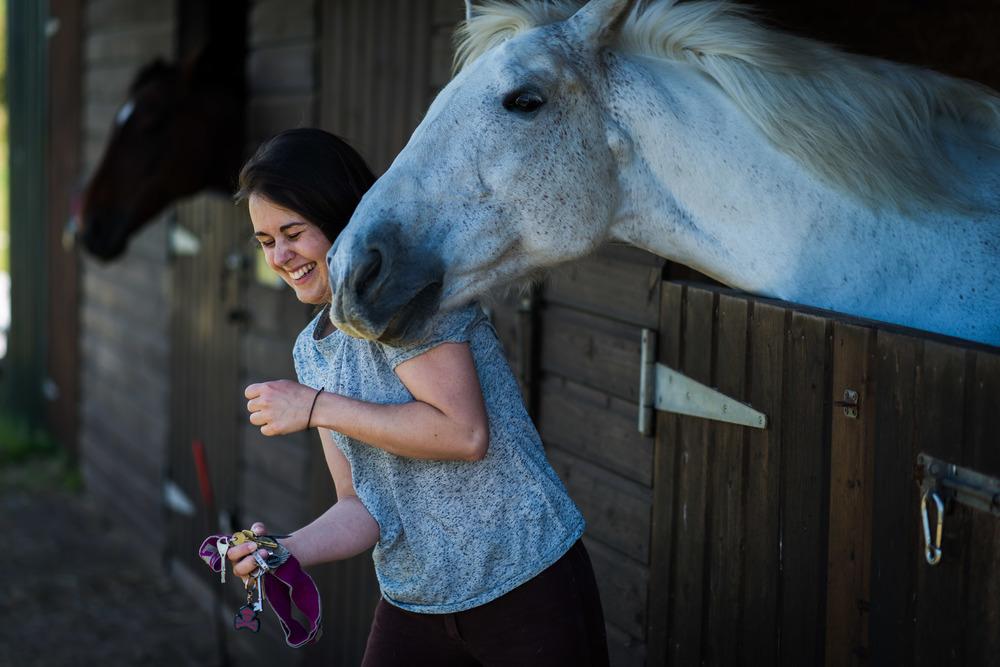PLP_Horses_JessD_15-17.jpg