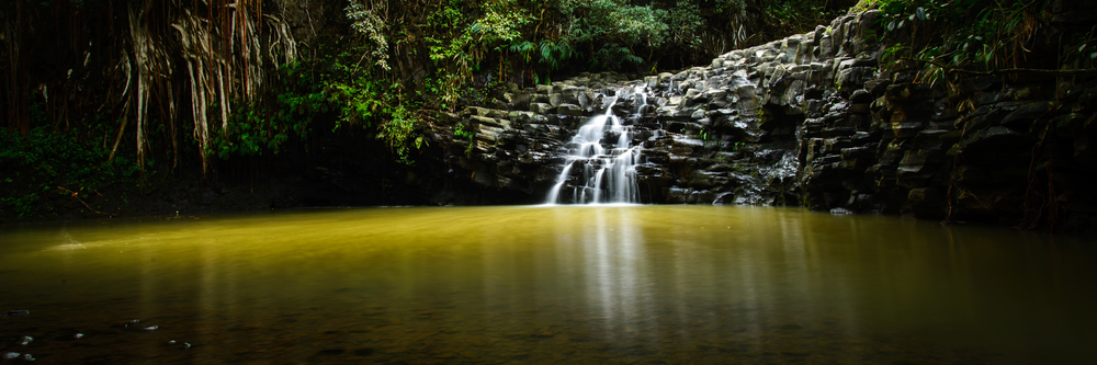 PLP_Hawaii_2014-24.jpg
