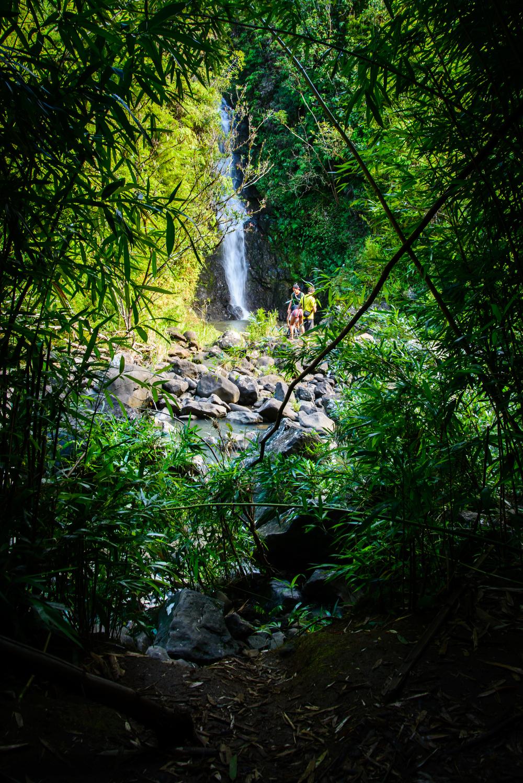 PLP_Hawaii_2014-20.jpg