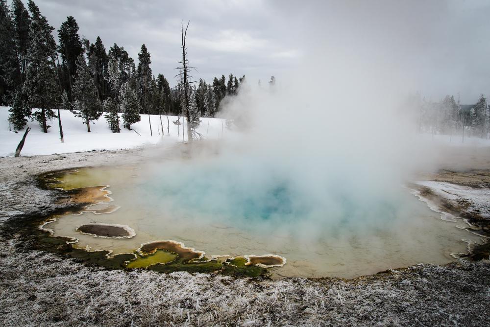 PLP_Yellowstone_2014-14.jpg