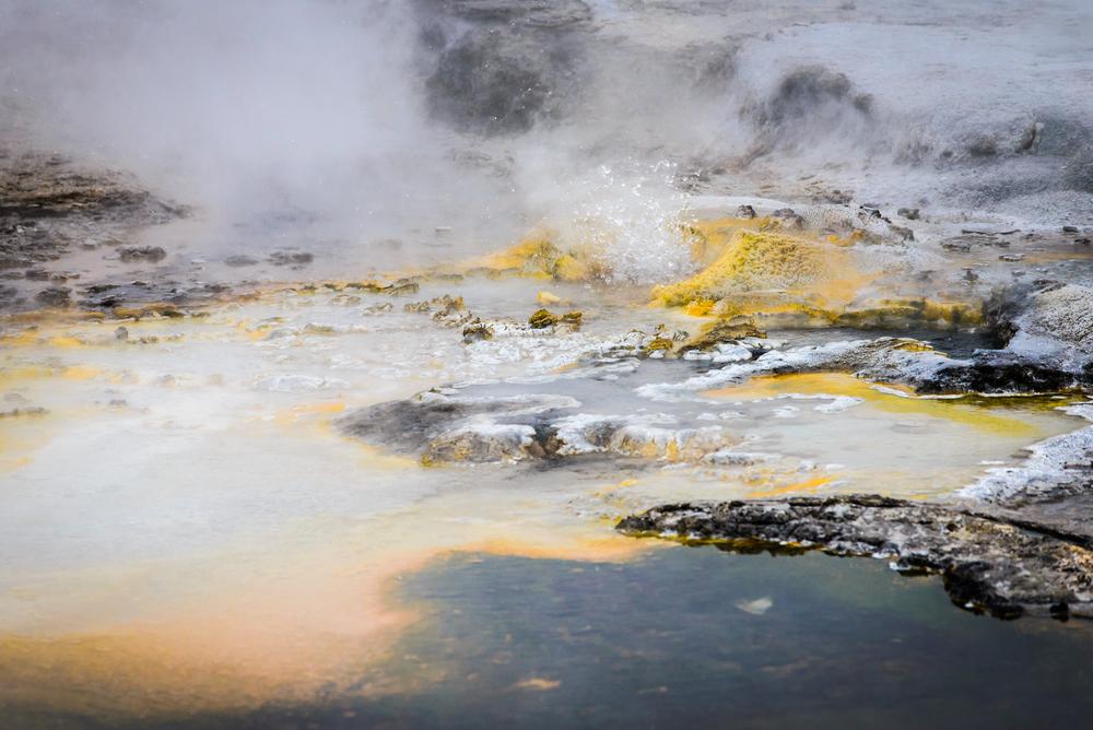 PLP_Yellowstone_2014-20.jpg