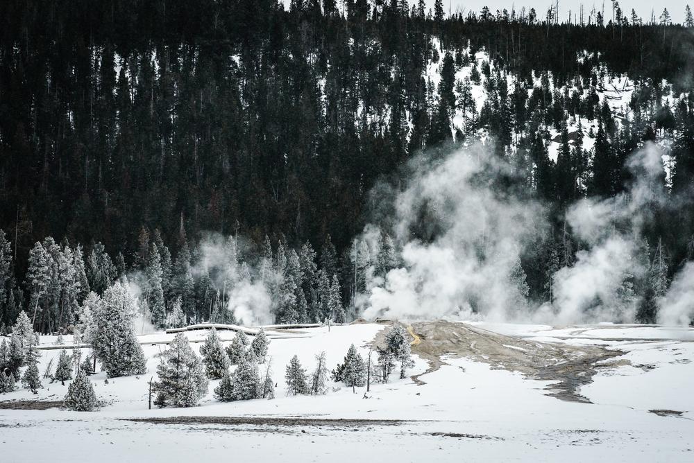 PLP_Yellowstone_2014-25.jpg