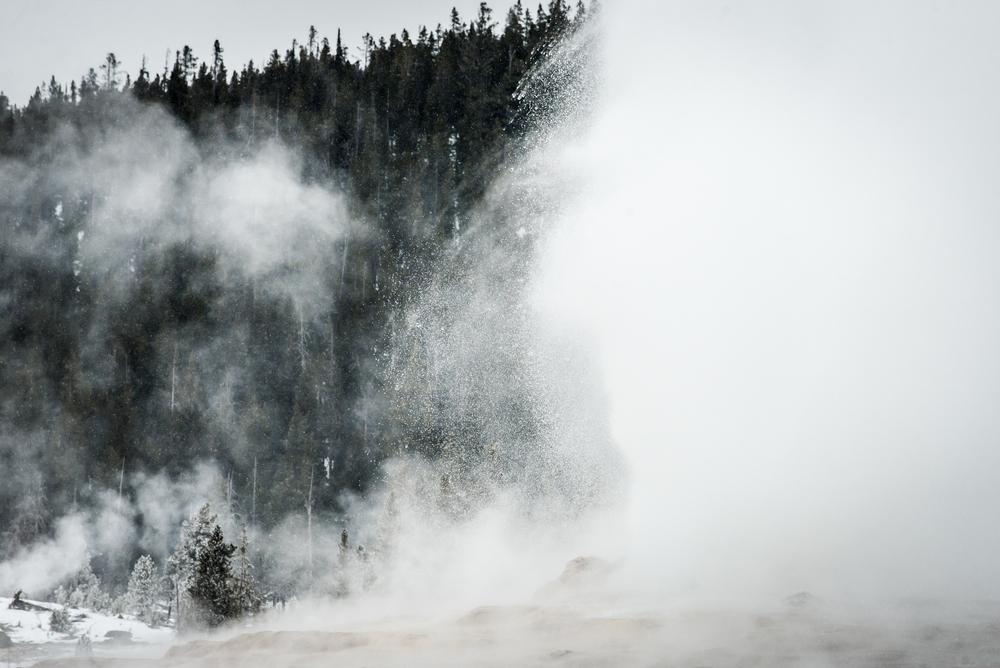 PLP_Yellowstone_2014-28.jpg