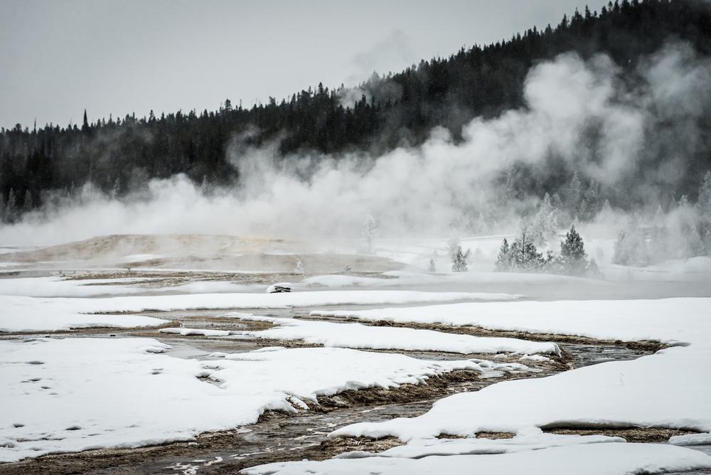 PLP_Yellowstone_2014-27.jpg