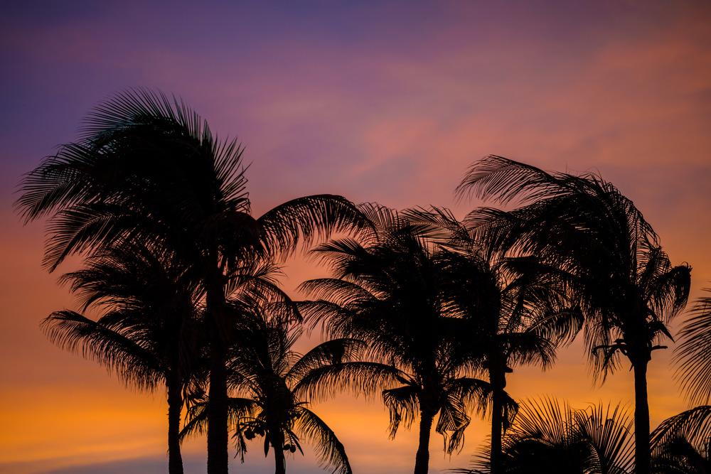 Teya_Devon_Night_Mexico_Oct15_PLP-8.jpg