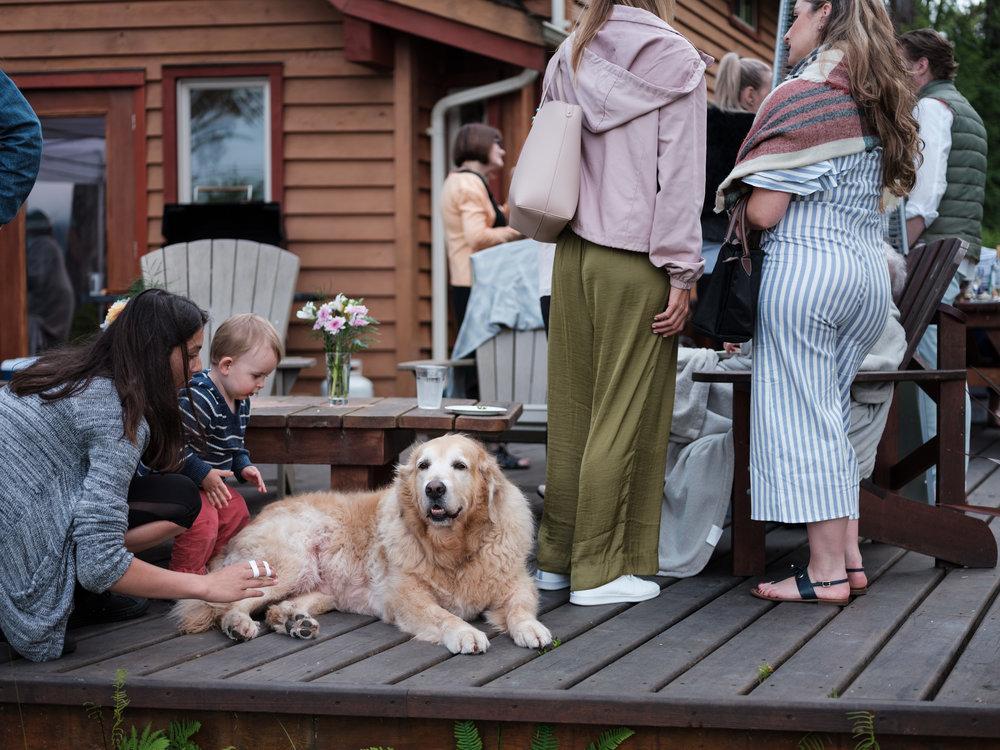 tofino ucluelet wedding engagement photographer ucluelet