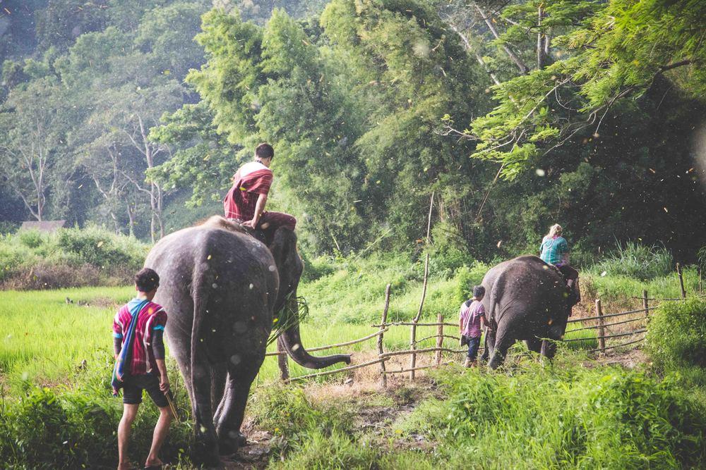 Thailand 2013-2351.JPG