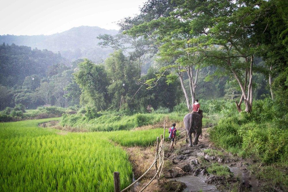 Thailand 2013-2370.JPG
