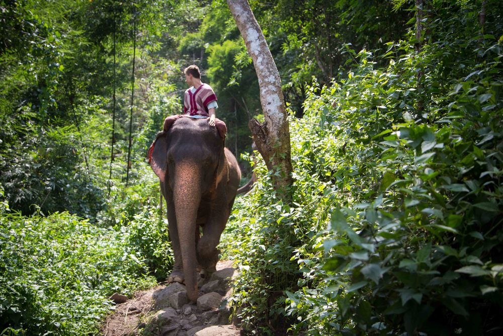 Thailand 2013-2183.JPG