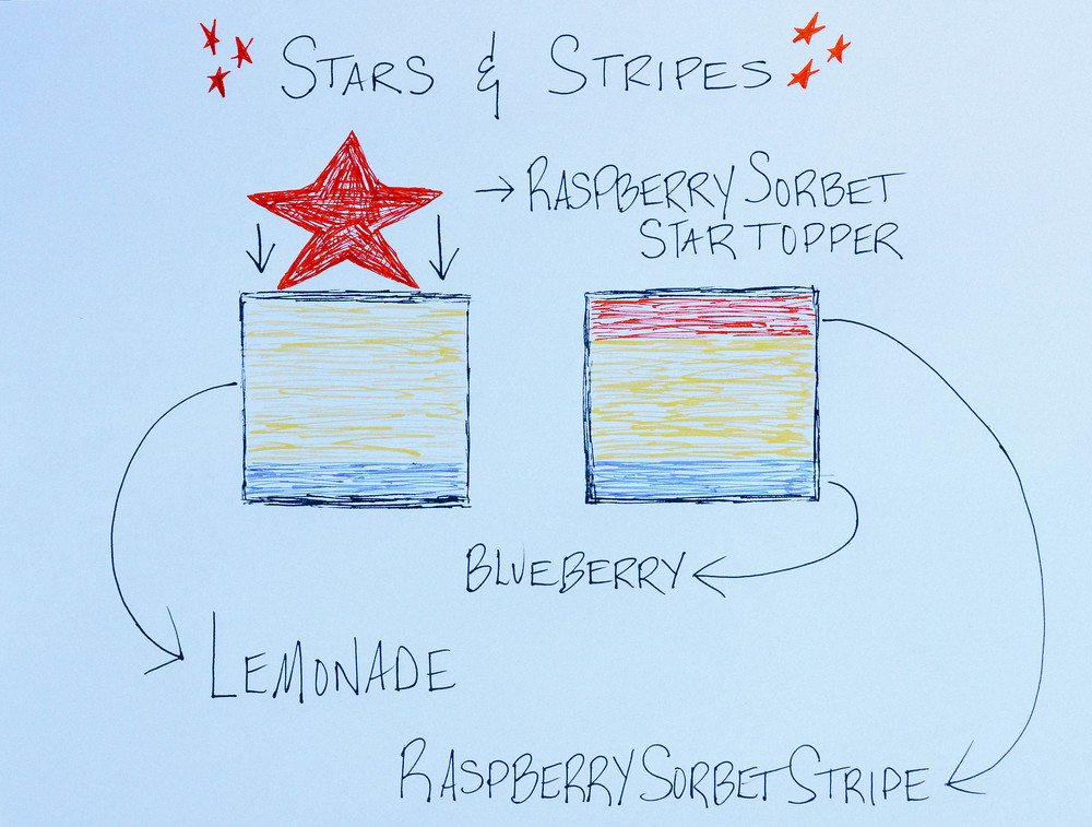 Blueberry Lemonade + Raspberry Sorbet Stars and Stripes Jumbo Square Pops | Seed Plant Water Grow