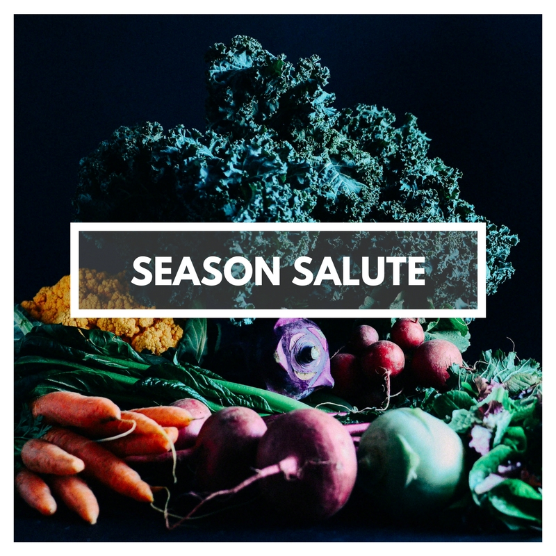 Season Salute Conversation Starter | Seed Plant Water Grow